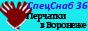 СпецСнаб36 Воронеж